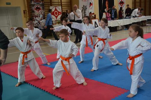 Galeria Karate maj 2021
