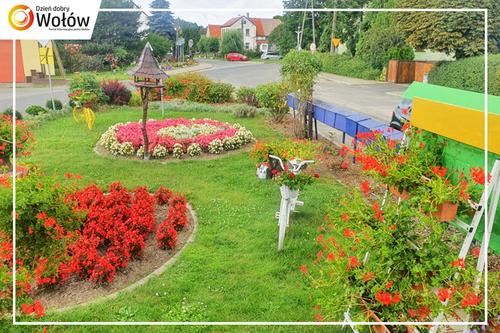 Galeria Kwiaty i dekoracje w Krzydlnie Małej