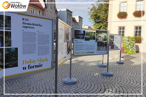 Galeria Dolny Śląsk w formie